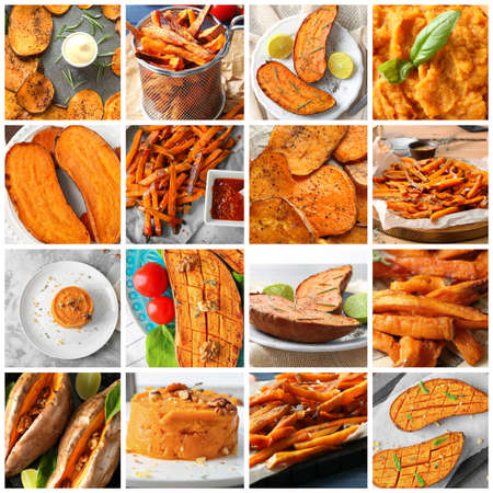 Collage with different potato dishes