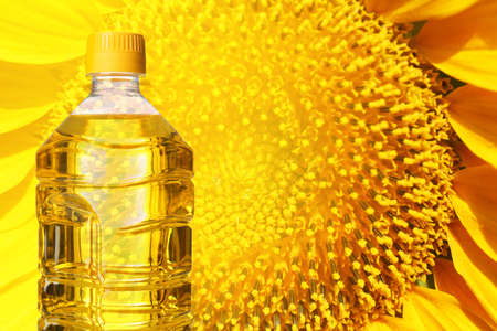 Bottle of cooking oil and sunflower on background