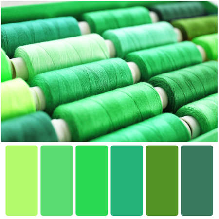Color palette and green sewing threads of different shades, closeup Stock Photo