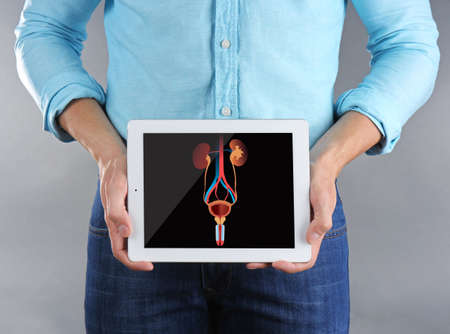 Young man holding tablet with illustration of urinary system on grey background. Cancer concept