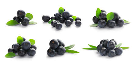 Collage of acai berries on white background Stock Photo