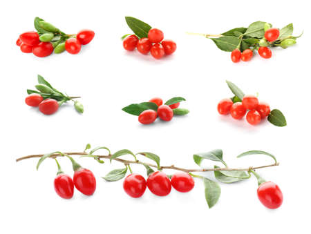 Collage with goji berries on white background