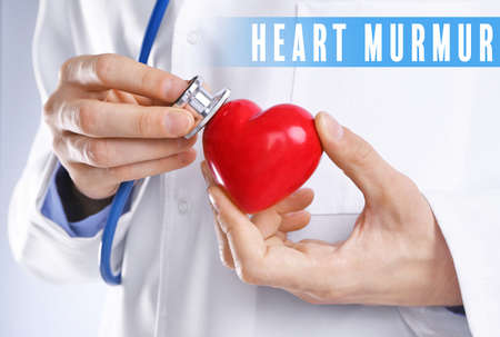 Cardiology and health care concept. Doctors hands with heart and stethoscope Stock Photo