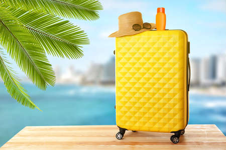 Travel concept. Suitcase on seascape background
