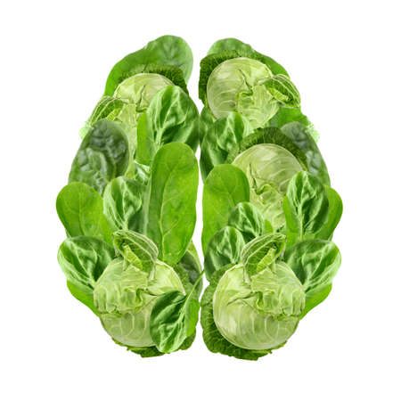 Health care concept. Brain made of organic food on white background
