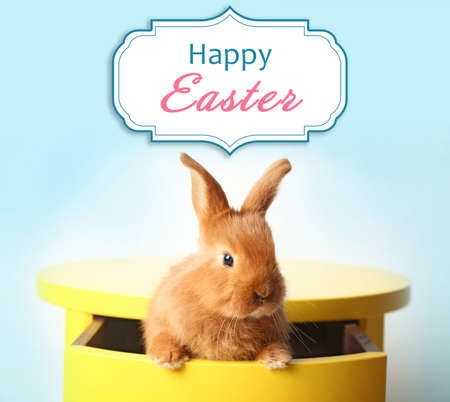 Cute rabbit sitting in yellow table drawer and text HAPPY EASTER on background Stock Photo