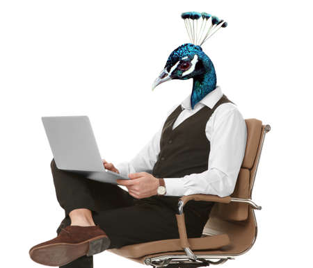 Businessman with head of peacock on white background
