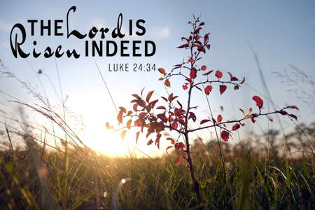 Religious verse on landscape background. Easter celebration concept