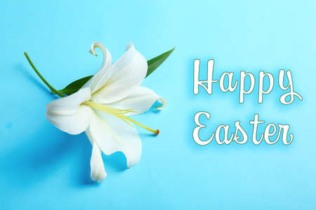White lily and text HAPPY EASTER on color background