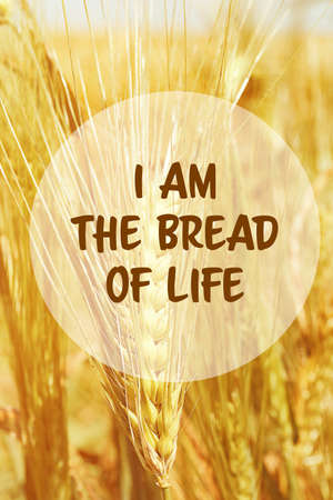 Text I AM THE BREAD OF LIFE and golden spikes on background