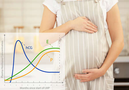 Health care concept. Graphic of changes in hormone levels during pregnancy and woman on background