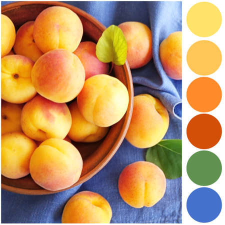 Color matching palette. Tasty apricots in bowl on napkin