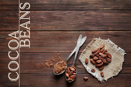 Aromatic cocoa beans and powder with spoons on wooden background