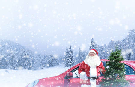 Santa Claus with Christmas tree near car in forest during snowfall