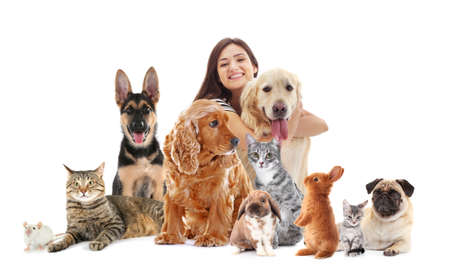 Young woman with cute pets on white background