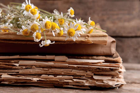 Old books with dry flowers on table close up Stock Photo