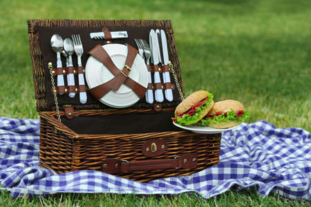 Wicker picnic basket, tasty sandwiches  and plaid on green grass, outdoors  Stock Photo