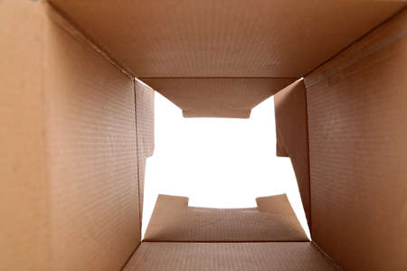 Cardboard box inside view
