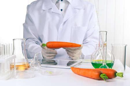 Scientist examines carrots in laboratory Stok Fotoğraf