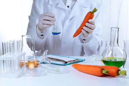 Scientist examines carrots in laboratory Stock Photo