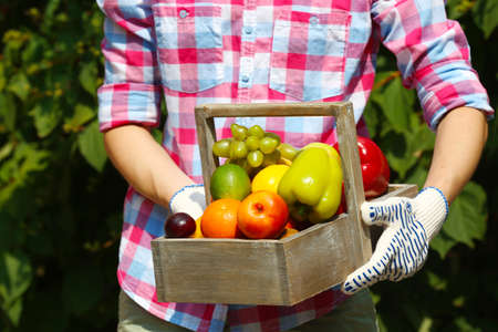 Woman holding crate with fruits and vegetables outdoors