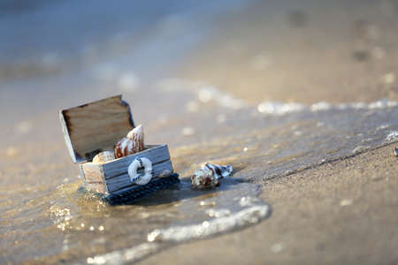 Concept of coral and chest with shells on the seashore Stock Photo