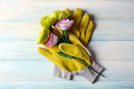 Concept of blossom bouquet and garden gloves on light wooden background