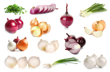 Collage with different kinds of onion on white background