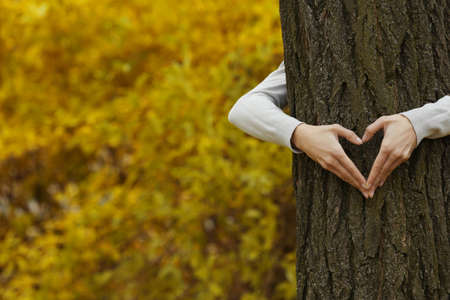 Human hands hugging tree in the park Stock Photo