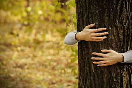 Human hands hugging tree in the park Archivio Fotografico