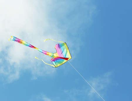 Kite in blue sky background