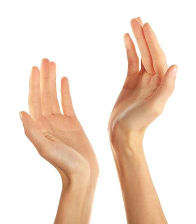 Mani umane isolate su sfondo bianco