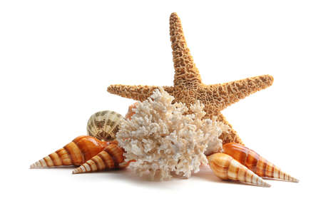 Sea star and coral isolated on white Stock Photo