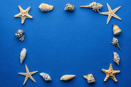 Frame shaped seashells on dark blue background Stock Photo