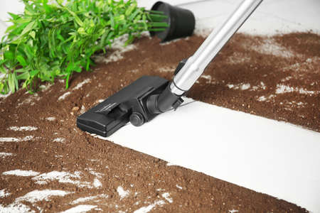 Vacuum cleaning after falling flower pot on a tiled floor Stockfoto