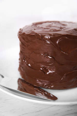 Chocolate cake on a plate with blade on light background, closeup
