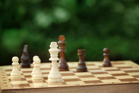 Chess pieces and game board on nature background