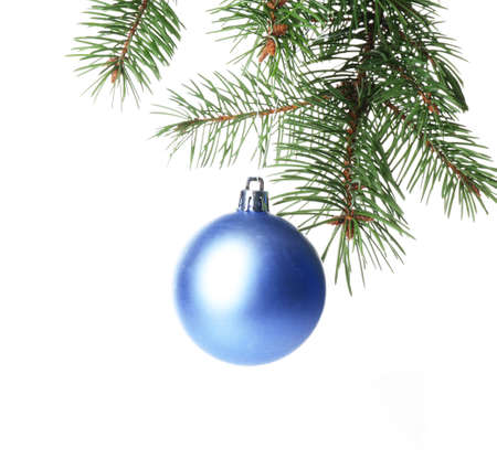 Christmas blue bauble on a fir branch, isolated on white background