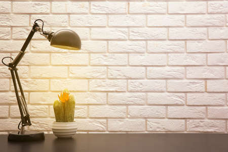 Lamp and plant on the desk on wall background