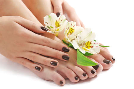 Manicured female feet and hands with flowers isolated on white