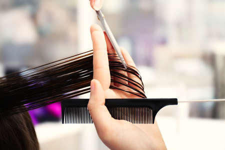 Professional hairdresser cutting clients hair Stock Photo