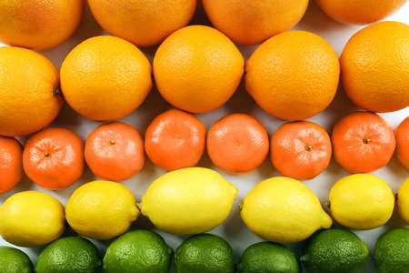 Colorful mixed citrus fruit  sorted and lined up in rows, close up Stock Photo