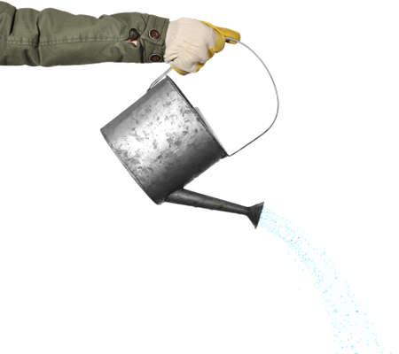 Hand pouring from metal watering can, isolated on white background