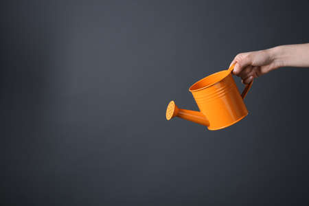 Female hand holding orange metal watering can on grey background 스톡 콘텐츠