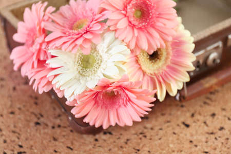Bouquet of pink and white gerberas on old suitcase over pin board