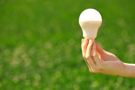 Female hand holding light bulb on the green background