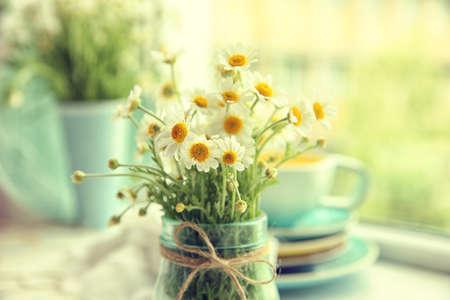 Bouquet of fresh chamomiles on blurred kitchen background