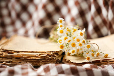 Chamomile bouquet with old book, closeup