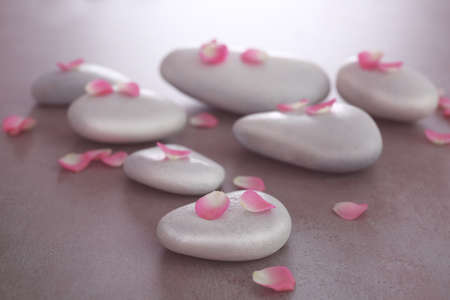Spa stones with petals on grey background Stock Photo