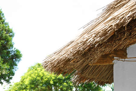 House thatching on sky background